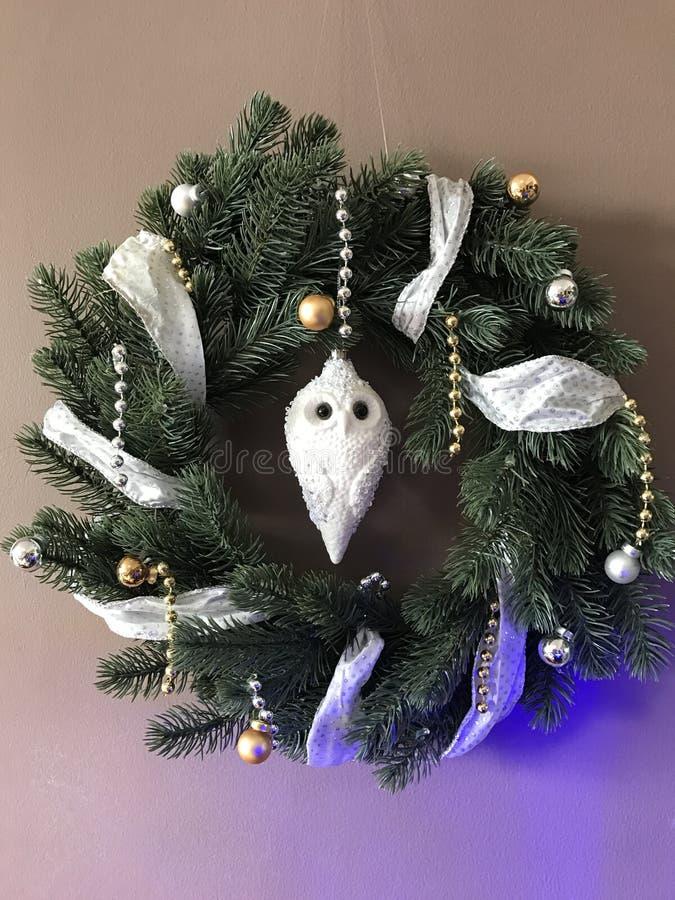 与猫头鹰的圣诞节花圈 库存照片