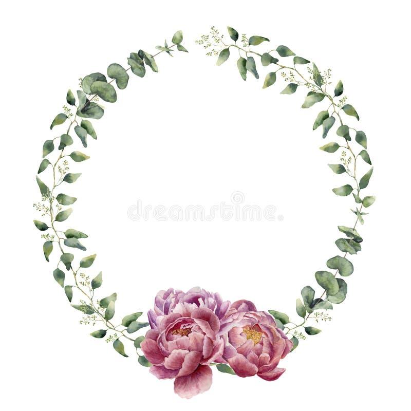 与玉树、婴孩玉树叶子和牡丹的水彩花卉花圈开花 向量例证