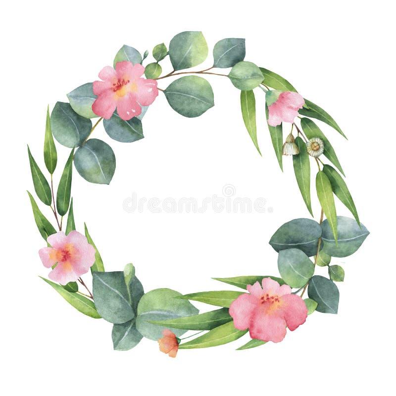 与玉树叶子和分支的水彩圆的花圈 皇族释放例证