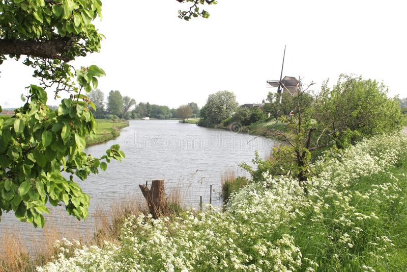 与玉米风车& Linge河的荷兰风景 免版税库存照片