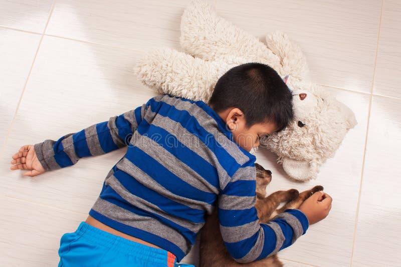 与玩具熊和棕色猫的小男孩睡眠 库存照片