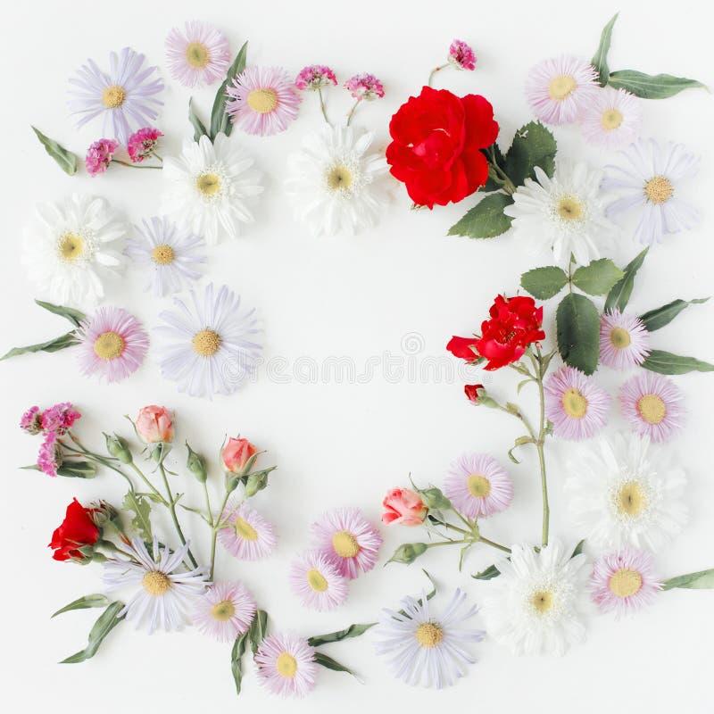 与玫瑰、桃红色花蕾、分支和叶子的圆的框架花圈样式在白色背景 库存图片