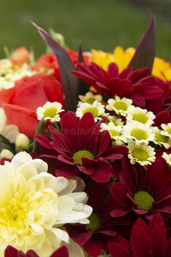 与玫瑰、菊花和春黄菊的五颜六色的春天花束花 美丽的花礼物 设计的模板 复制空间 免版税库存图片
