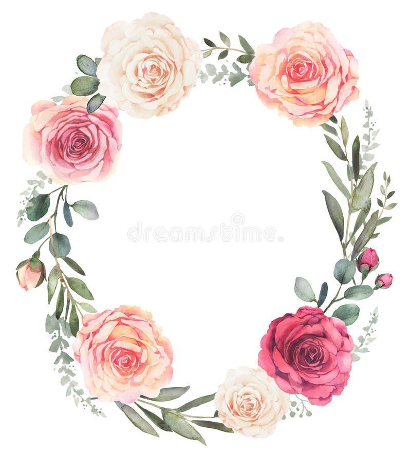 与玫瑰和玉树的水彩花卉花圈 库存例证