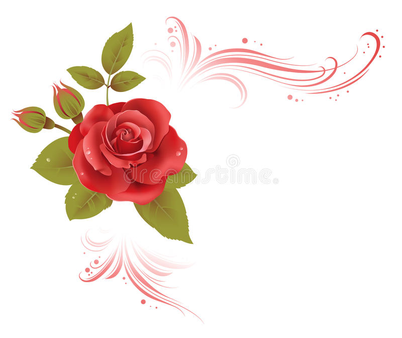 与玫瑰的花卉壁角构成 向量例证