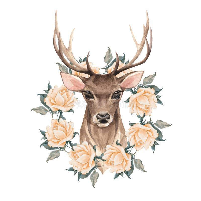 与玫瑰的高尚的鹿 库存例证