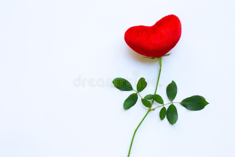 与玫瑰色分支的红心在白色,拷贝空间 概念背景为情人节 图库摄影