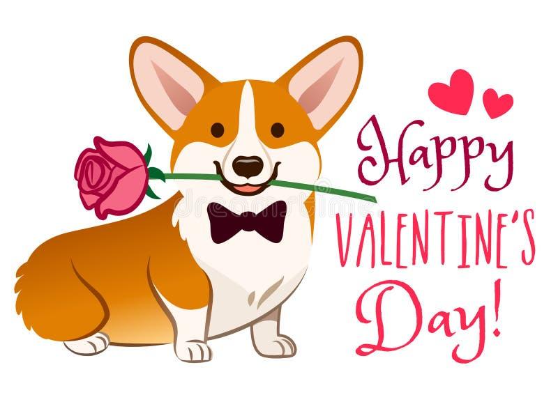 与玫瑰色花的小狗狗在嘴情人节卡片传染媒介动画片 在白色背景的逗人喜爱的坐的小狗小狗 滑稽 皇族释放例证