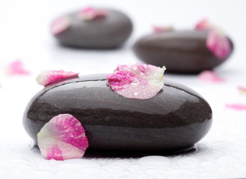 与玫瑰花瓣的温泉石头。 免版税库存照片