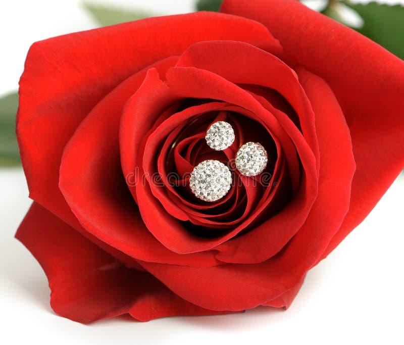 与环形的红色玫瑰与珠宝特写镜头 库存照片