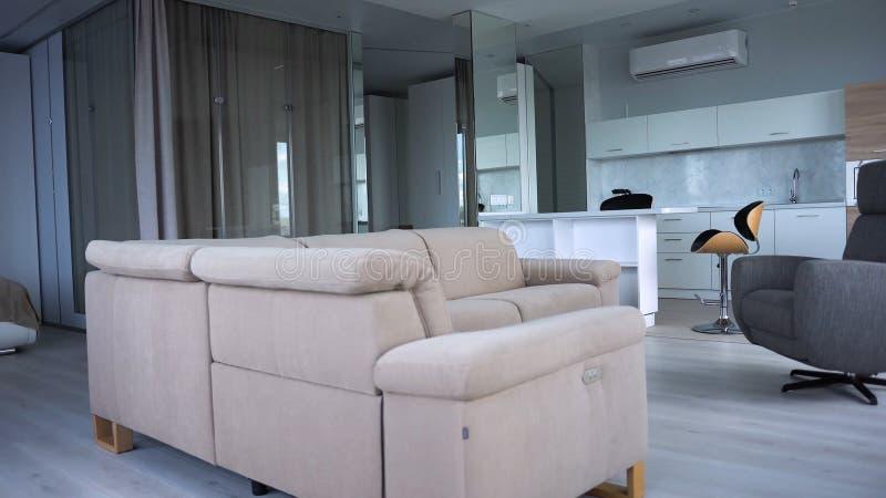 与现代厨房的时髦的公寓内部 r 公寓现代时兴的内部  免版税库存照片