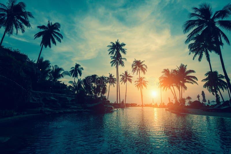 与现出轮廓的棕榈树的热带海海滩在日落期间 自然 免版税图库摄影