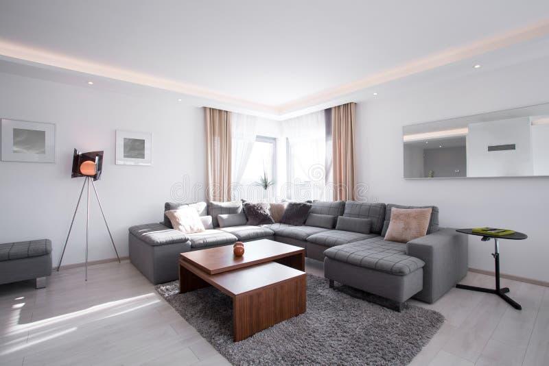 与现代家具的被设计的内部 免版税库存图片