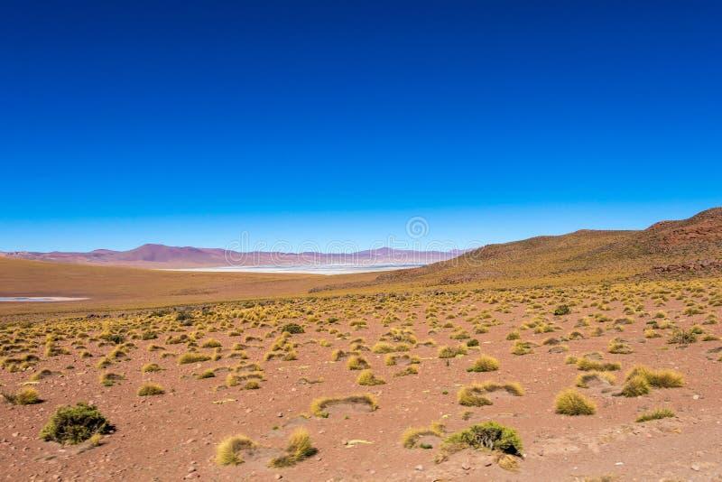 与玻利维亚人阿尔蒂普拉诺高原风景的被弄脏的背景  免版税库存照片