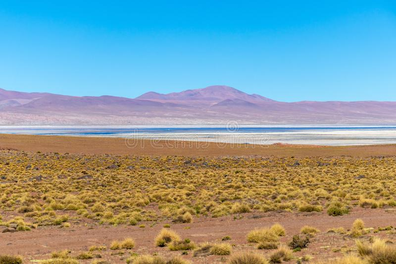 与玻利维亚人阿尔蒂普拉诺高原风景的被弄脏的背景  库存照片
