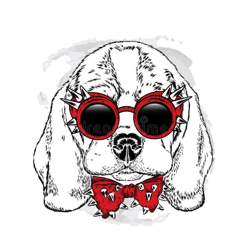与玻璃和蝶形领结的一条美丽的狗 也corel凹道例证向量 在衣裳和辅助部件的纯血统小狗 皇族释放例证