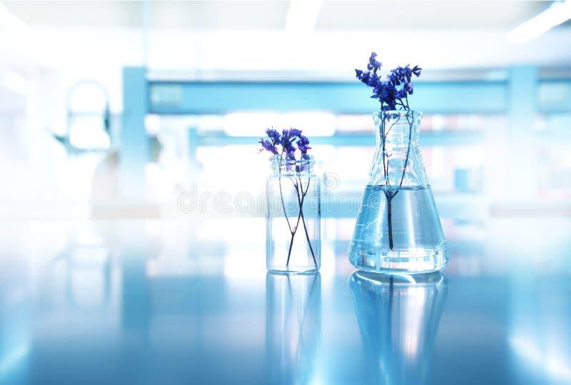 与玻璃烧瓶和小瓶的紫色花在生物化妆用品h 库存照片