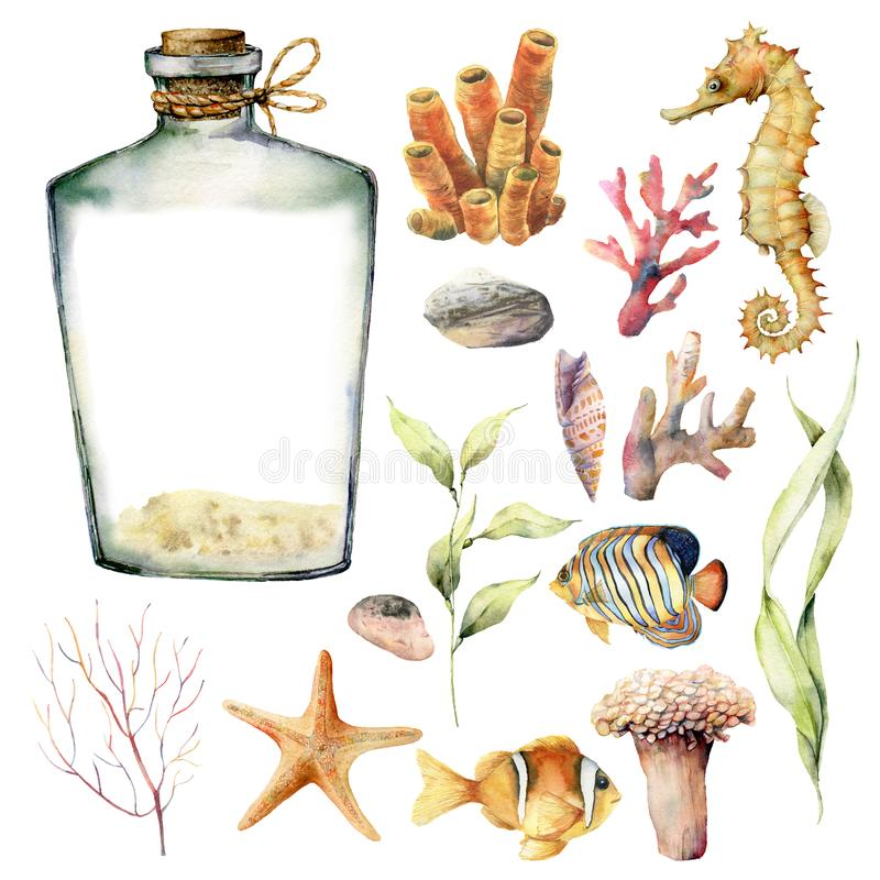 与珊瑚动物、植物和鱼的水彩船舶集合 手画水下的分支,海星,被隔绝的瓶 向量例证