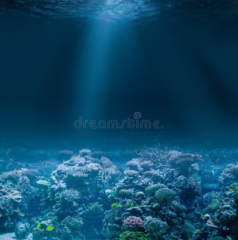 与珊瑚礁的海或海洋海底 蓝色颜色虚拟水下的视图 免版税库存照片