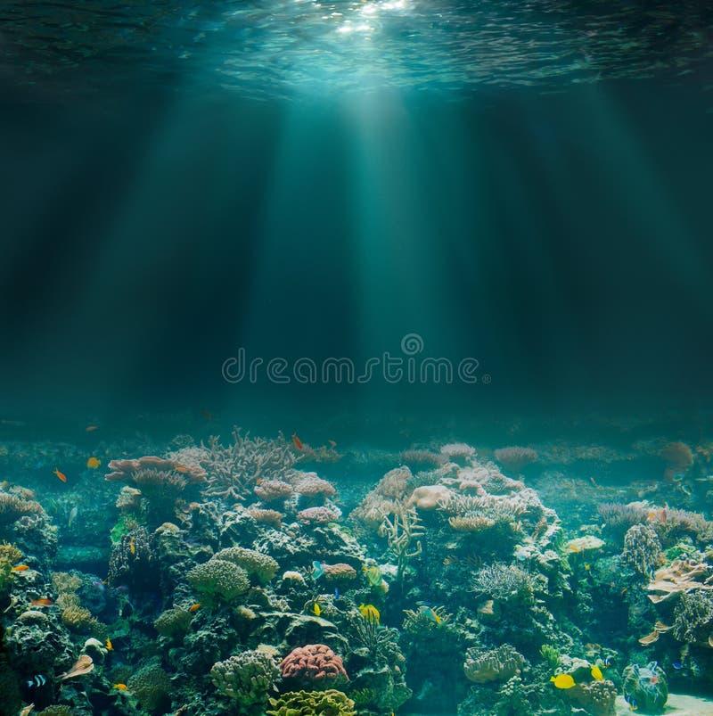 与珊瑚礁的海或海洋海底 蓝色颜色虚拟水下的视图 图库摄影