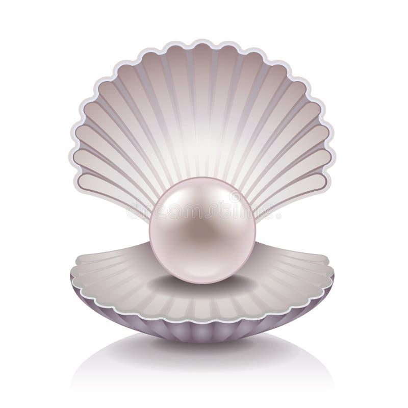 与珍珠传染媒介例证的壳 向量例证
