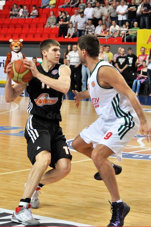 与球的Aleksandr Lypovyy 库存图片