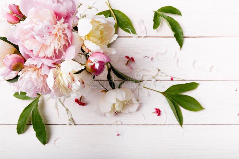 与瓣花的精美白色桃红色牡丹和在木板的白色丝带 顶上的顶视图,平的位置 复制空间 生日, 免版税库存图片
