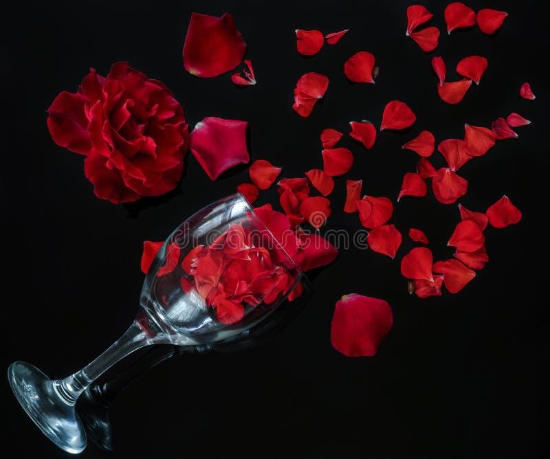 与瓣,那名每名妇女爱的一件好礼物的英国兰开斯特家族族徽 库存照片