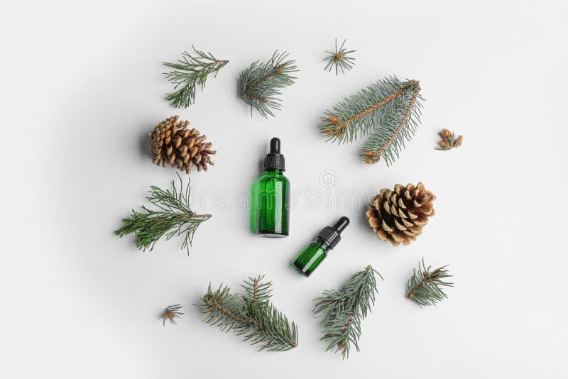 与瓶的平的被放置的构成精油和杉木分支在白色 库存照片