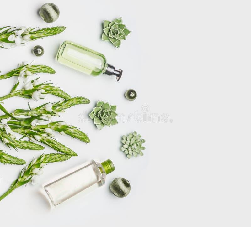 与瓶的绿色草本自然化妆设置面部洗涤的产品、草本和花在白色背景,顶视图 库存照片