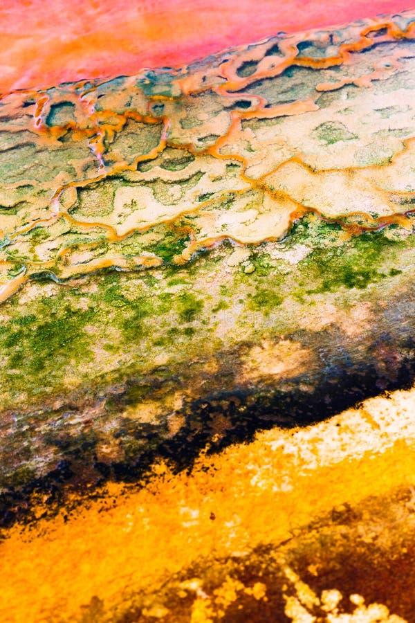 与生动的小条的自然纹理 与天然盐腐蚀老五颜六色的污点的抽象背景在脏的混凝土的 免版税库存图片