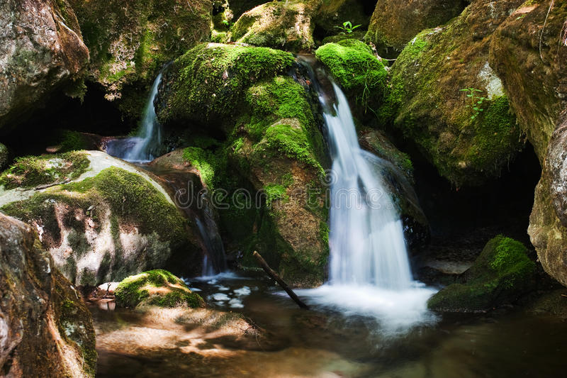 与生苔岩石的级联在森林里 免版税库存图片