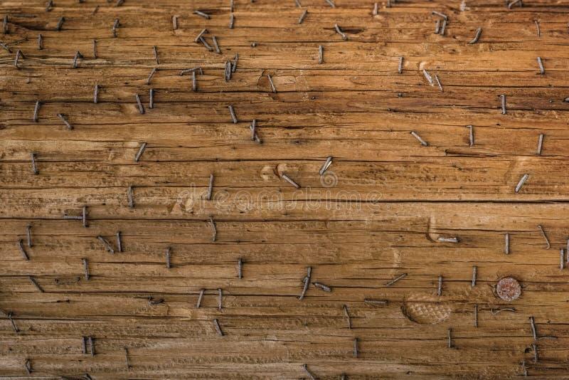 与生锈的纸夹钉书针的ld木结构表面和钉子朝向 库存图片