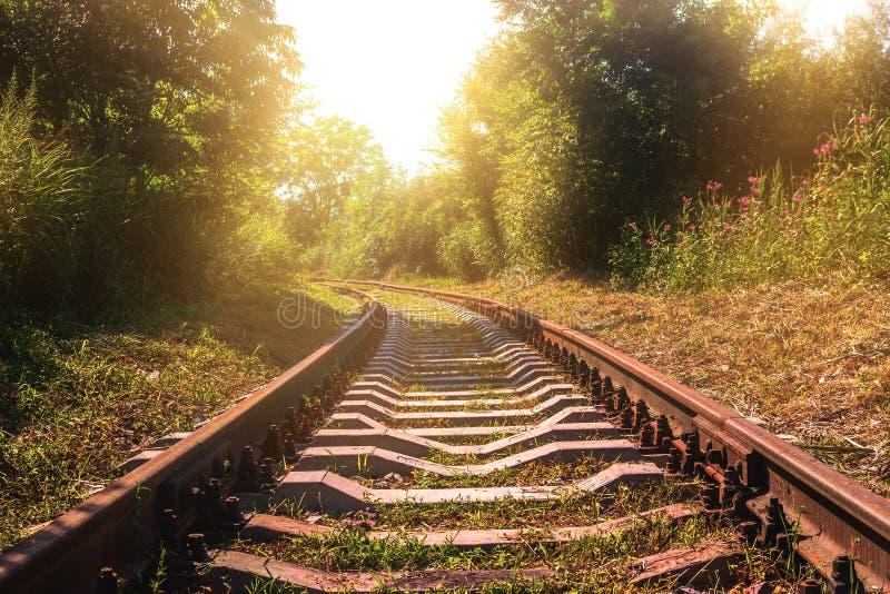 与生锈的路轨的老被放弃的铁路在平衡日落期间的夏天 免版税库存照片