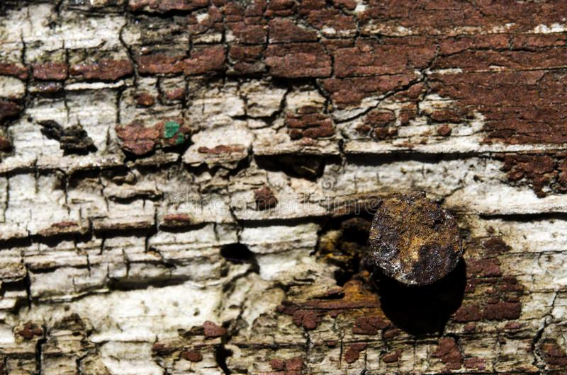 与生锈的钉子的老棕色木背景 图库摄影