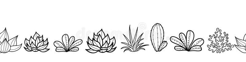 与生长多汁植物和仙人掌的传染媒介黑白无缝的水平的重复样式边界在罐 时髦 向量例证