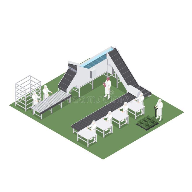 与用于食品工业的机械的自动化的生产线 皇族释放例证