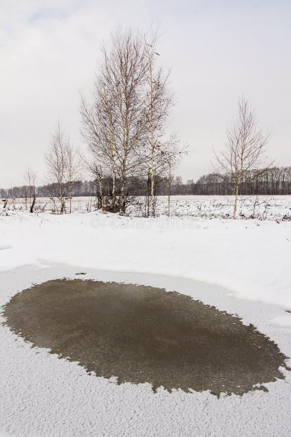 与用冰盖的水坑的秋天风景 图库摄影
