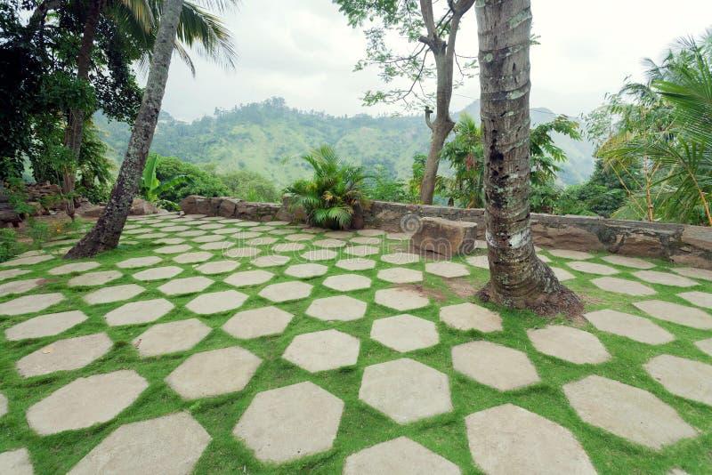 与用石平板和绿色草坪装饰的庭院的美好的热带风景 环境美化在亚洲 免版税库存照片