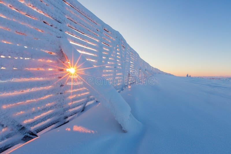与用霜盖的篱芭的冬天风景 免版税库存照片