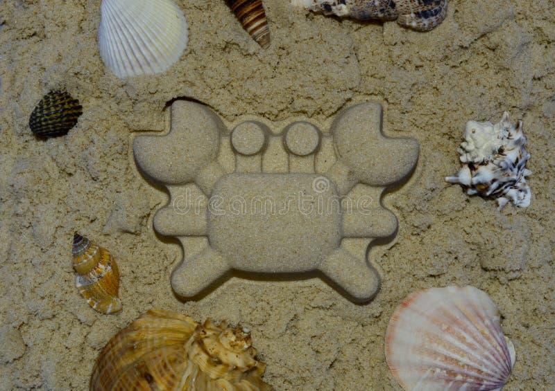 与由沙子做的螃蟹的海壳在中心 图库摄影