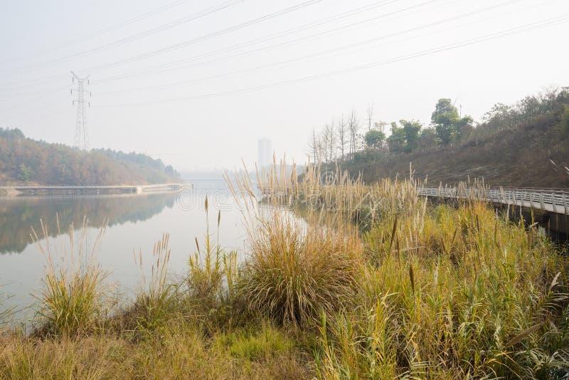 与电的细长的河沿在晴朗的冬天af缚住上面 免版税库存照片