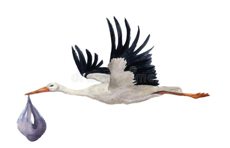 与男孩婴孩的水彩手画飞行白色鹳 在白色背景隔绝的手画ciconia鸟例证 为 皇族释放例证