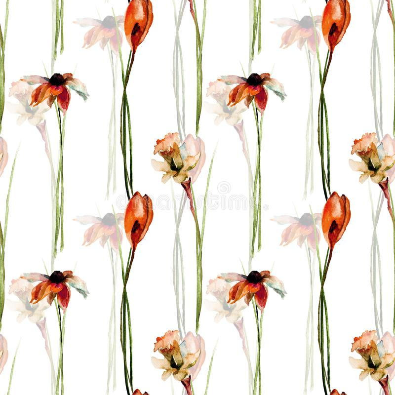 与番红花、gerber和水仙的无缝的样式开花 库存例证