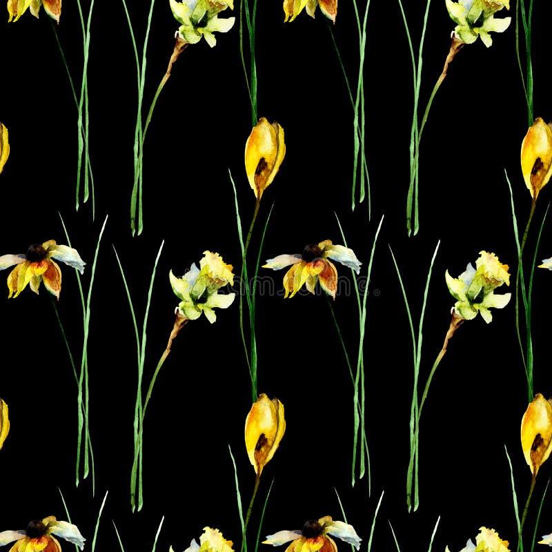 与番红花、gerber和水仙的无缝的样式开花 免版税图库摄影