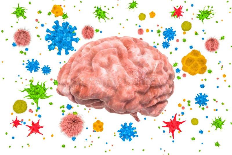 与病毒和细菌的脑子 脑疾病概念,3D翻译 皇族释放例证