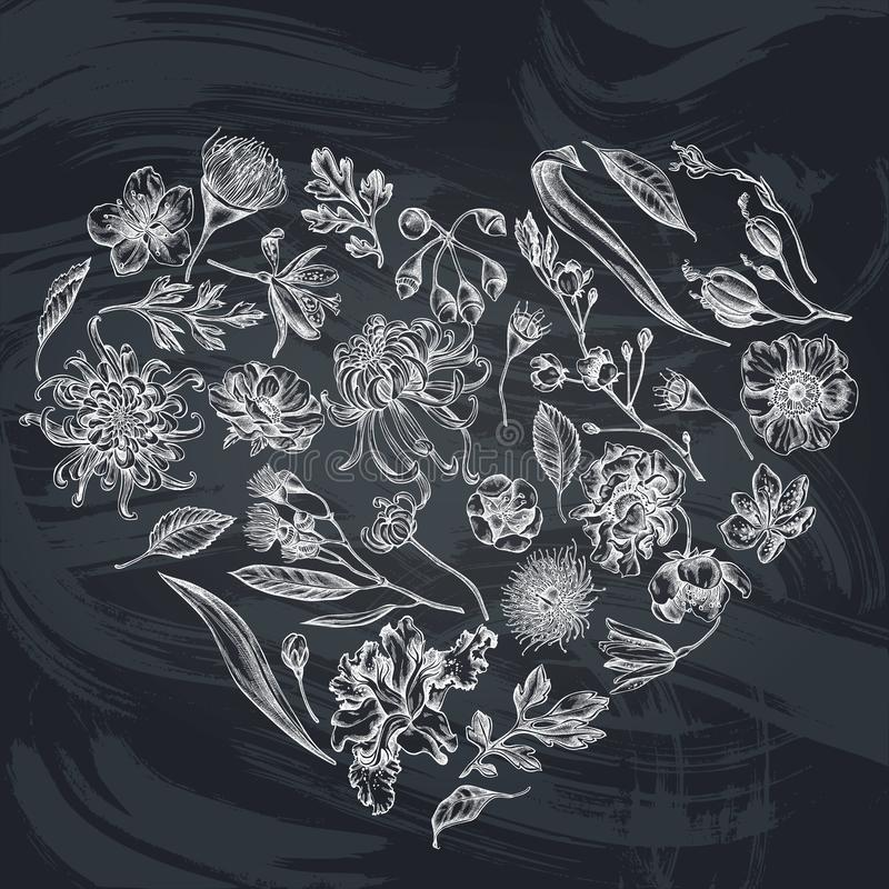 与白垩日本菊花,黑莓百合,玉树花,银莲花属,虹膜japonica的心脏花卉设计 皇族释放例证