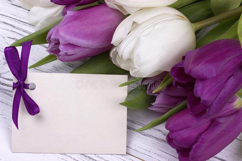 与白皮书的紫色和白色郁金香在与卡片的白色木背景文本的 妇女天 3月8日 日母亲s 免版税库存图片