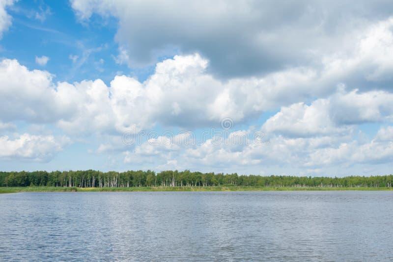 与白色云彩的天空蔚蓝在湖上在森林里 库存照片