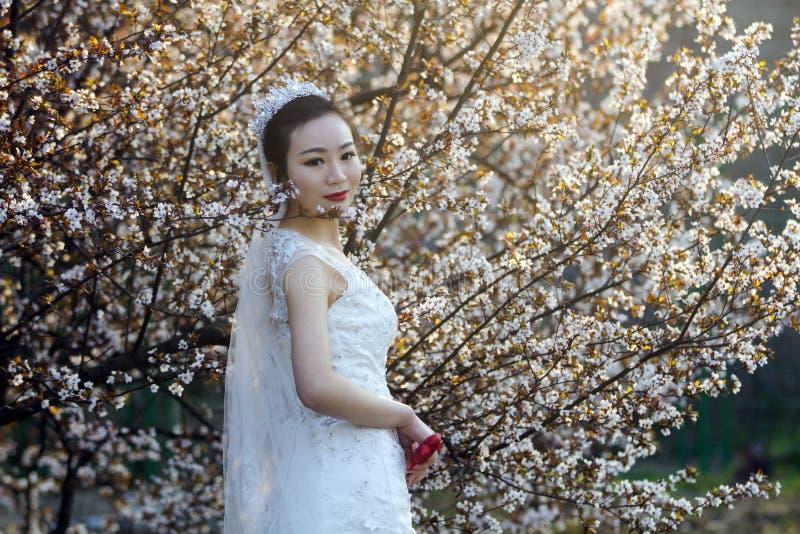 与白色婚礼礼服的新娘portraint在樱花前面 免版税库存图片
